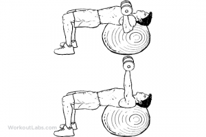 stability_ball_dumbbell_chest_press_m_workoutlabs